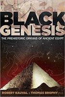 2 - Black Genesis.jpg